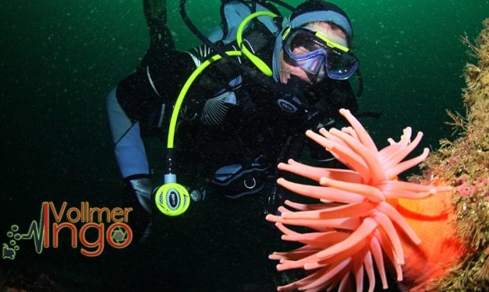 Ingo Vollmer, Diving Cape Breton
